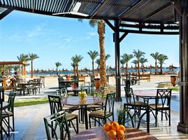 Splash Beach Bar im Albatros Palace - Aegypten