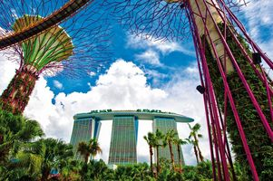 Gardens by the Bay - Marina Bay Sands - Singapur