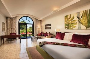 Junior Suite - JA Palm Tree Court & Spa - Dubai