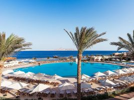 Swimmingpool - Cleopatra Luxury Resort Sharm El Sheikh - Aegypten